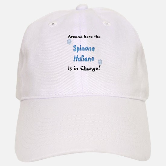 Spinone Charge Hat