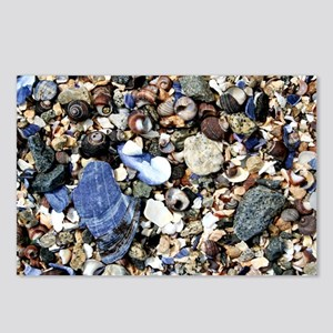 Broken Shells Postcards (Package of 8)
