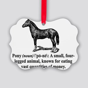 Pony Definition Picture Ornament