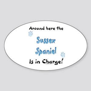 Sussex Charge Oval Sticker