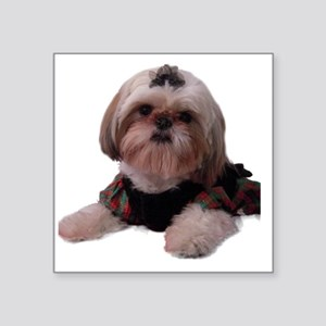 "shihtzu004 Square Sticker 3"" x 3"""