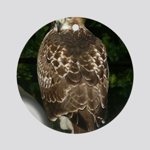 Hawk10x8a Round Ornament