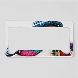 430965_98957813 License Plate Holder