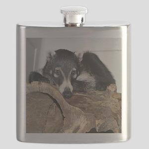 IMG_5916b Flask