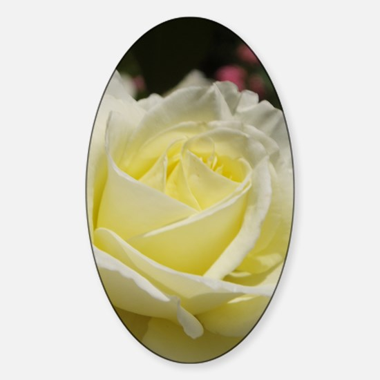 Ivory rose Sticker (Oval)