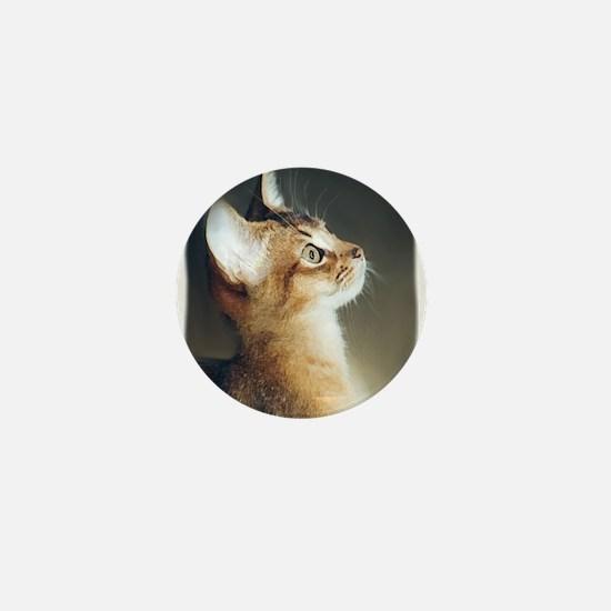 Cute Abyssinian cat Mini Button