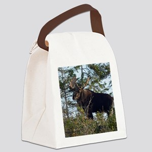 9x7  6 Canvas Lunch Bag