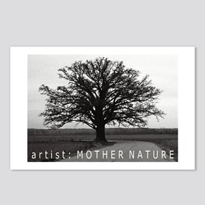 Oak Tree Postcards (Package of 8)