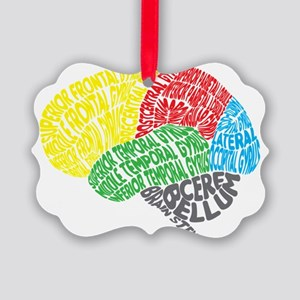 Your Brain (Anatomy) on Words Picture Ornament