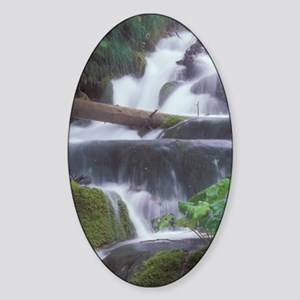 Water cascades over moss covered ro Sticker (Oval)