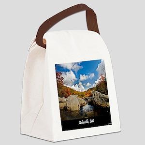 ASHEVILLE_v2_DeJidas_1146_16x20 Canvas Lunch Bag