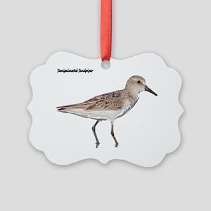 Image7 Picture Ornament