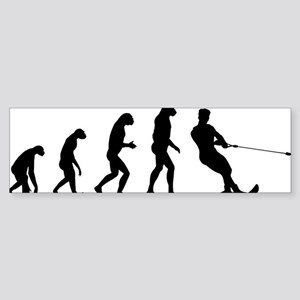 evolution15 Sticker (Bumper)