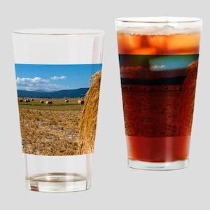 (2) Hay Shasta 2 Drinking Glass