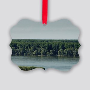Meeting from Sava and Danube rive Picture Ornament