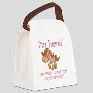 ponyarrive_Pink Canvas Lunch Bag