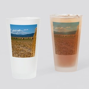 (14) Hay Shasta 2 Drinking Glass