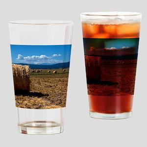 (4) Hay Shasta 3 Drinking Glass