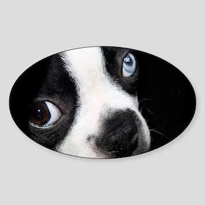 BT BE laptop Sticker (Oval)
