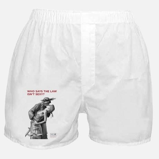 SexyPoster_23x35 Boxer Shorts
