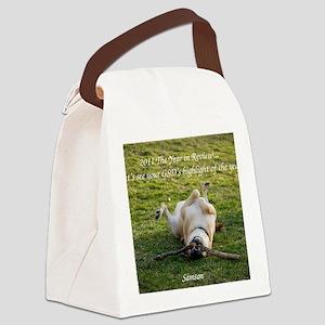 Jan2011 Canvas Lunch Bag