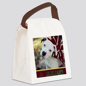 ive got a present Canvas Lunch Bag