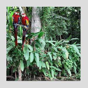Scarlet Macaw photo -Panama Canal Cru Tile Coaster