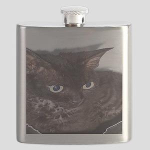 Cat-PJs-1 Flask