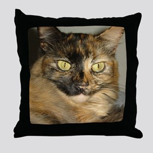 004 Throw Pillow