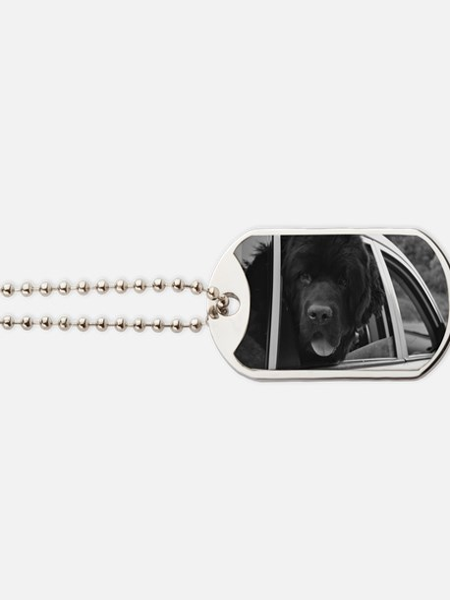 DSC_0046 Dog Tags