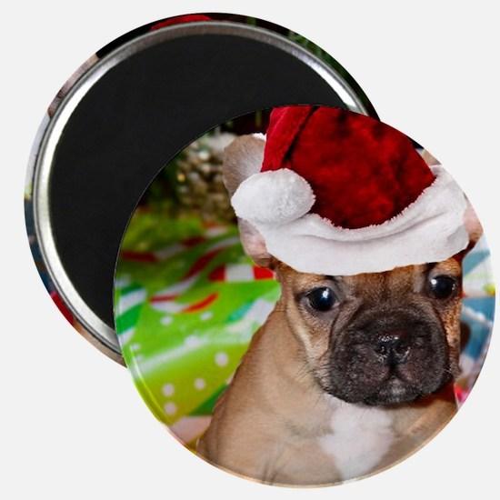 christmas French bulldog 4a Magnets