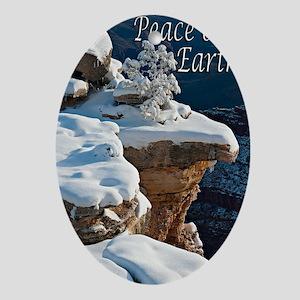 peace_one_earth_DSC0835-2 copy copy Oval Ornament
