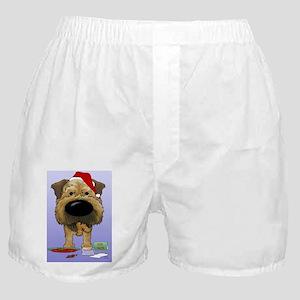BorderTerrBlue Boxer Shorts
