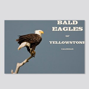 cover eagle Postcards (Package of 8)