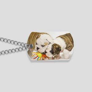 BD pups coin Dog Tags