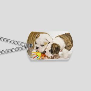 BD pups mini wallet Dog Tags