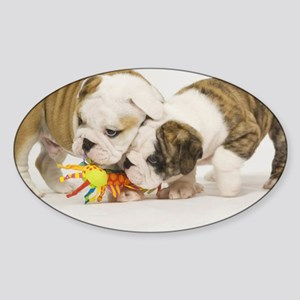 BD pups note Sticker (Oval)