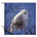 Snowy White Owl Shower Curtain
