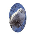Snowy White Owl Vertical 35x21 Oval Wall Decal