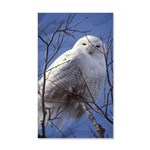 Snowy White Owl Vertical 20x12 Wall Decal