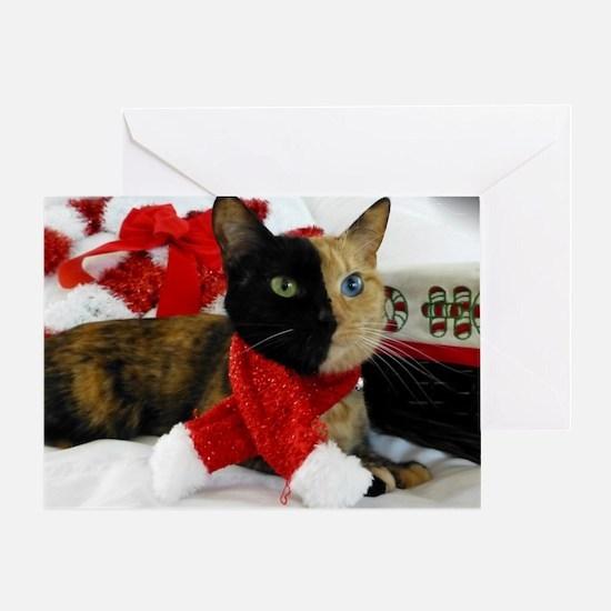 Venus Christmas scarf 2 Greeting Card