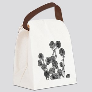 Echinopsis Canvas Lunch Bag