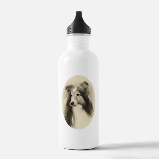 VSheltie#2Plain Water Bottle
