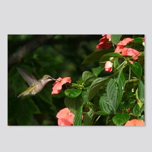 HMBD11.06x6.637 Postcards (Package of 8)