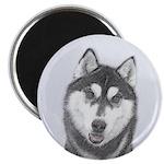 Siberian Husky (Black and W 2.25