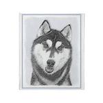 Siberian Husky (Black and White) Throw Blanket