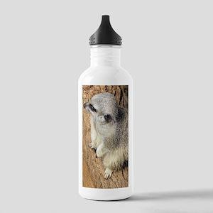 Meerkat - Cute Faces Stainless Water Bottle 1.0L