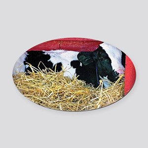 Lazy Cow Oval Car Magnet