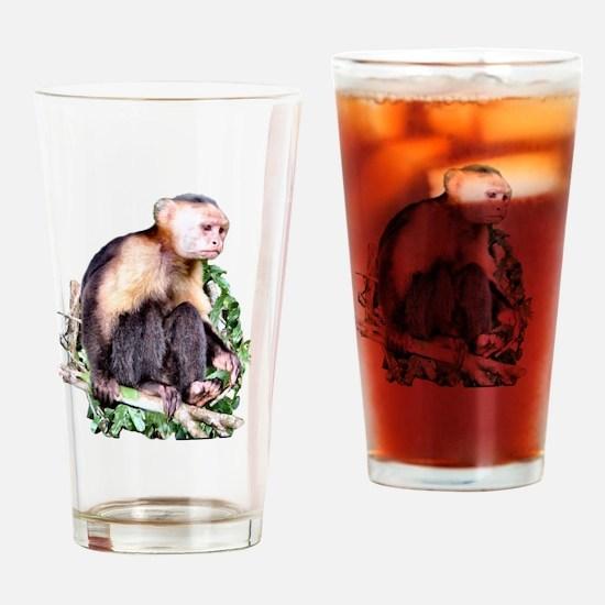 Capuchin  Monkey Drinking Glass