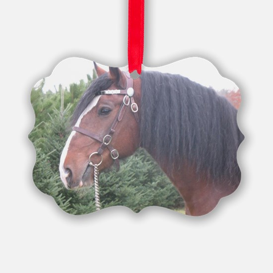 386965_10150465731144602_28313968 Ornament